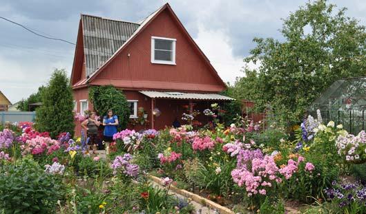 Рай на земле: как ижевчанка засадила цветами весь огород