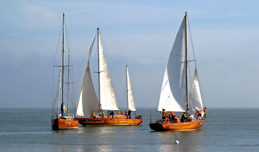 В парусной регате в Ижевске планируют принять участие 7 яхт