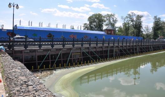 Количество сине-зеленых водорослей в Ижевском пруду побило все рекорды