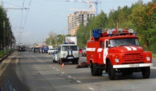 В Ижевске пассажирский автобус сбил лося