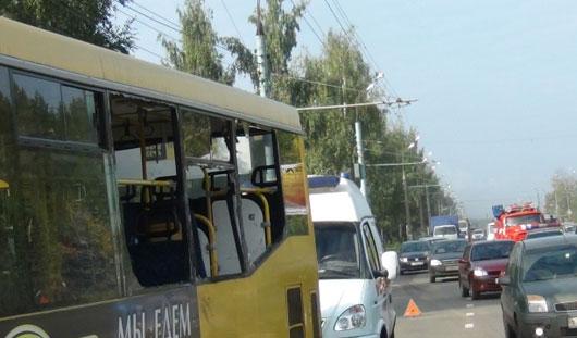 Что в Ижевске делал лось и почему он бросился под колеса автобуса?