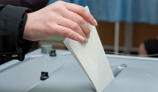 На довыборах в Госсовет Удмуртии победили «единороссы»