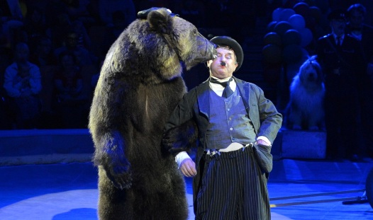 Шоу к юбилею ижевского цирка: зажигательная джигитовка и танцующие медведи