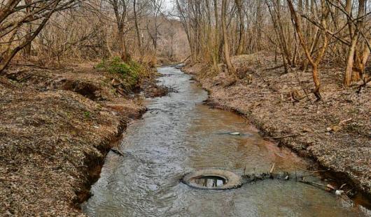 Волонтеры почистят берега речки Подборенки в Ижевске
