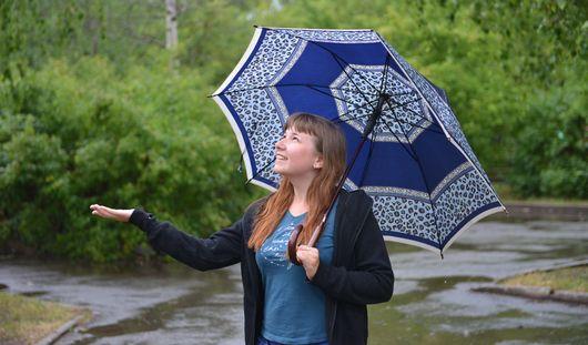 Всю неделю в Ижевске будут лить дожди