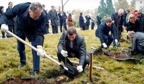 Фотофакт: Президент Удмуртии заложил липовую аллею