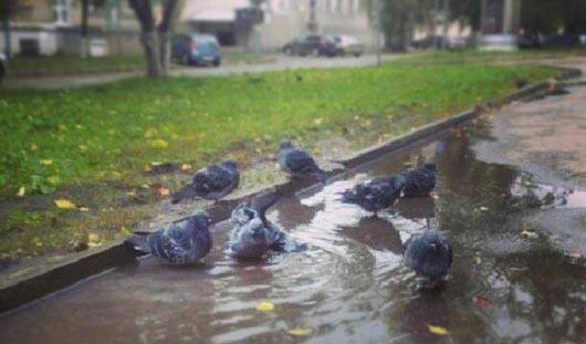 Стрельба по окнам и «сырой холод»: о чем сегодня утром говорят в Ижевске