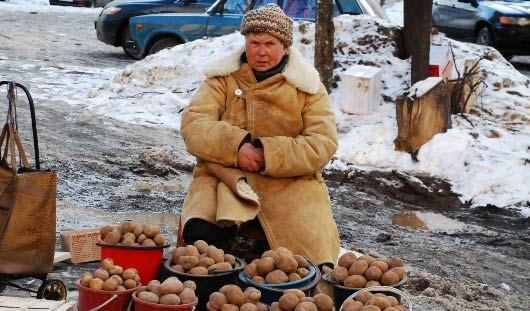 К началу ноября картофель в Удмуртии подорожает до 18 рублей за килограмм
