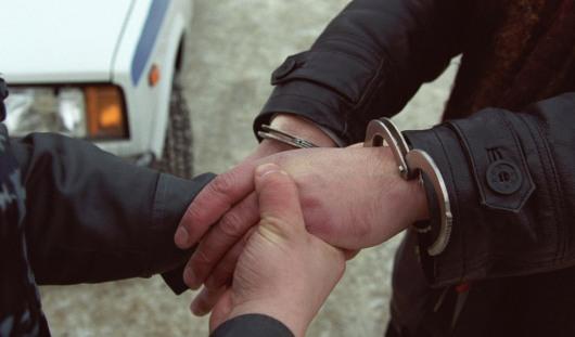 В Подмосковье арестовали экстремиста, вербовавшего скромных девушек
