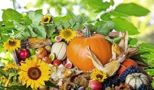 Что нужно есть осенью, чтобы укрепить свой иммунитет и не поправиться