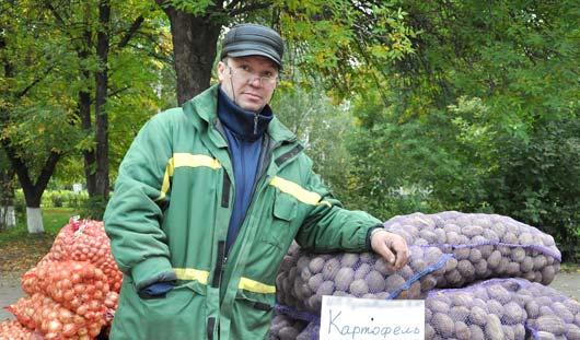 В ноябре картофель в Удмуртии подорожает до 18 рублей за килограмм