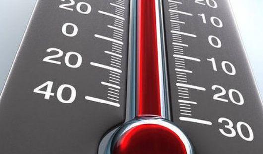 Покусанные дети и новый температурный рекорд: о чем этим утром говорят в Ижевске