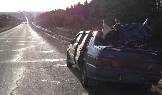 В Удмуртии после столкновения авто с лосем погибла пассажирка