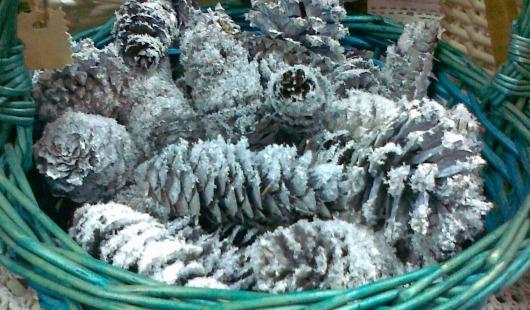 Кипарисы в горшках и серебряные шишки: чем ижевчанам украсить дом к Новому году?