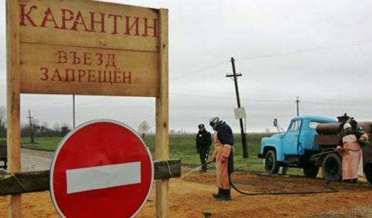 В трех районах Удмуртии ввели карантин по бешенству