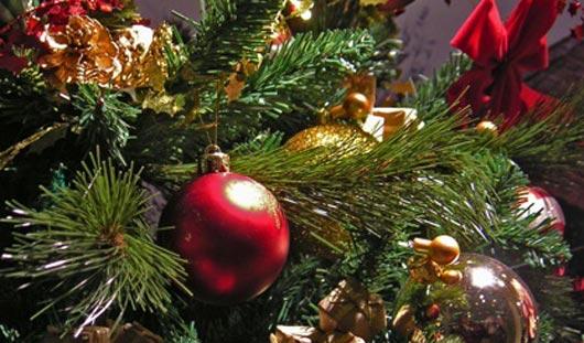 Житель Удмуртии убил сожительницу из-за новогодней елки