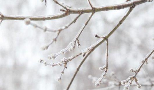 «Ледяной дождь» вернется в Ижевск
