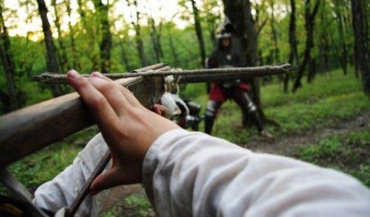 Житель Удмуртии собрал арбалет для защиты голубей от хищных птиц