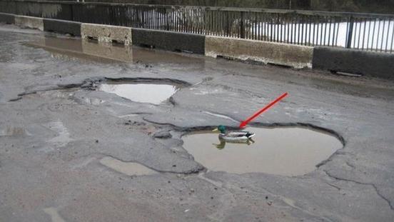 Петиция Путину и новые подробности трагедии с самолетом: о чем утром говорят в Ижевске