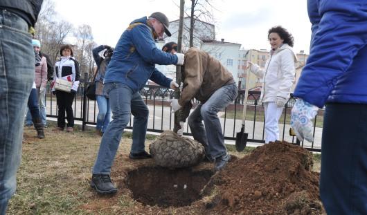 Ижевские депутаты и чиновники провели уборку и высадили деревья