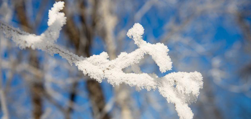 В выходные в Ижевске ожидается снежная погода