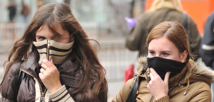 Свиным гриппом в Удмуртии заразились 110 человек