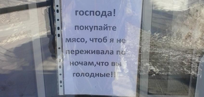 Фотофакт: в Ижевске работники продуктового магазина решили «давить» на жалость
