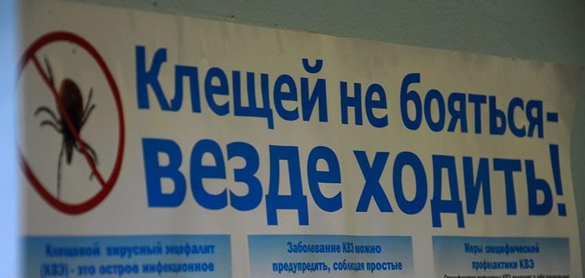 В 2016 году укушенных клещами в Ижевске будет больше обычного