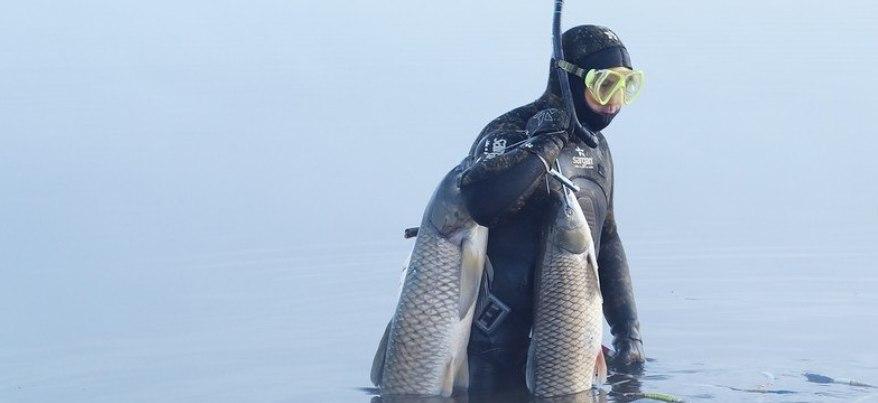 Подводная охота: ижевчанин на Каме поймал рыбу весом 42 кг