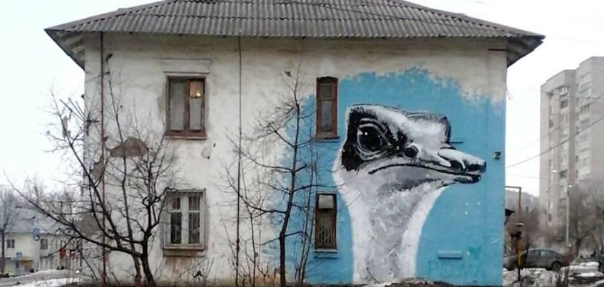 Жители Пензы завидуют ижевскому граффити со страусом