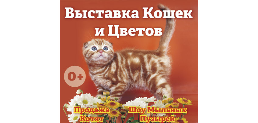 16–17 апреля в ТЦ «ЦУМ» пройдет выставка цветов и кошек