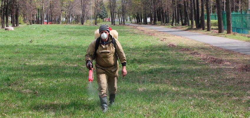Ижевчанам необходимо защитить себя от природно-очаговых инфекций
