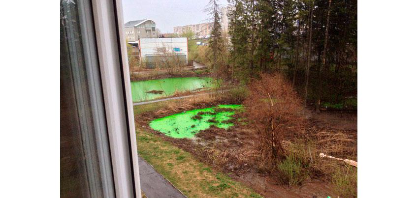 Администрация Ижевска: Вода в прудах рядом с Домом моделей стала зеленой из-за красителя
