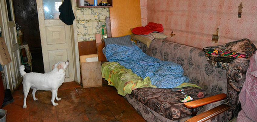 Пожилую женщину в Удмуртии, которую сестра оставила без жилья и денег, зимой согревали лишь кошка и собака