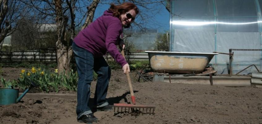 Как ижевчанам поливать, копать и полоть без вреда для здоровья
