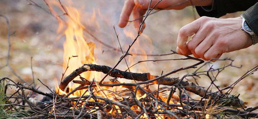 В 16 районах Удмуртии запретили разводить костры