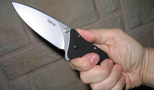 В Удмуртии вооруженные ножами и травматическим пистолетом бандиты обокрали квартиру