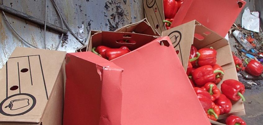 В Ижевске уничтожили 365 кг польских яблок и 20 кг болгарского перца
