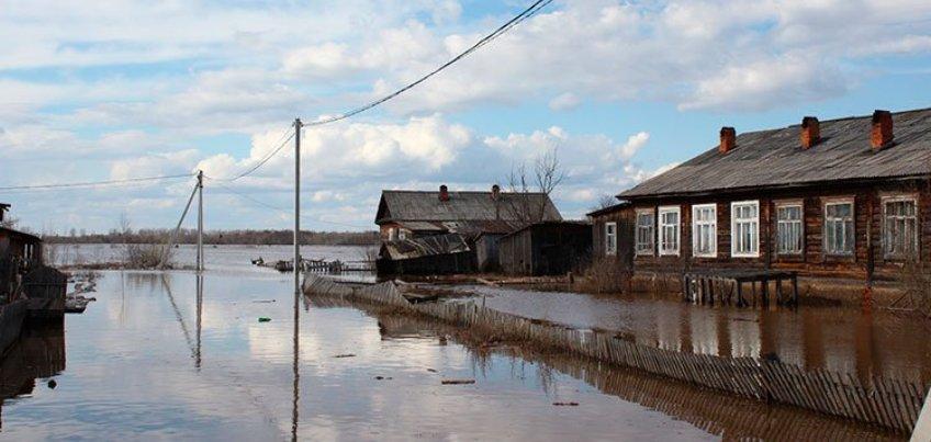 Полмиллиона рублей выделят семьям в Удмуртии, которые пострадали от весеннего паводка