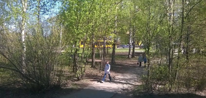 На месте вырубленных деревьев рядом с Автозаводской, 32 в Ижевске появится кафе