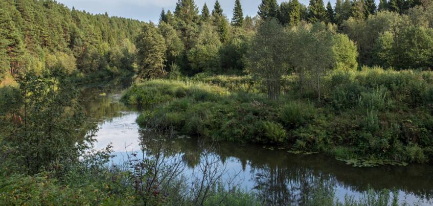 Двое мужчин утонули в водоемах Удмуртии с начала июля