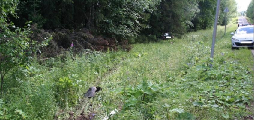 В Удмуртии водитель «ВАЗа» погиб после столкновения с деревом
