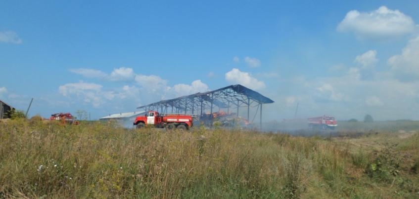 В Кизнерском районе Удмуртии загорелось 600 кв м сена