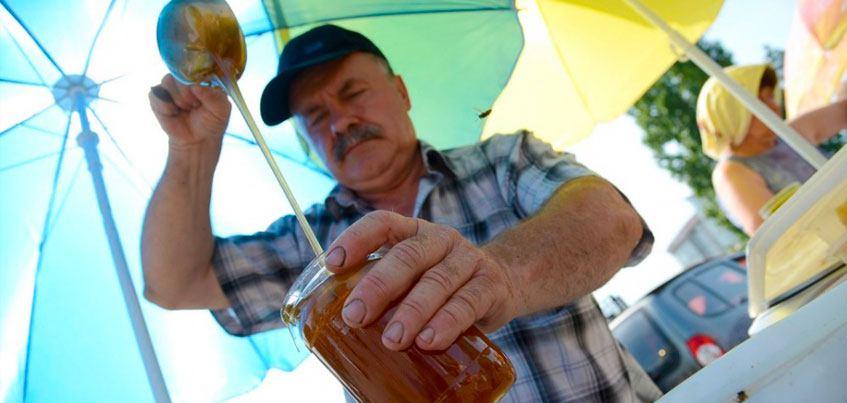 Охота на мед: как отличить натуральный продукт и где в Ижевске купить медовуху?