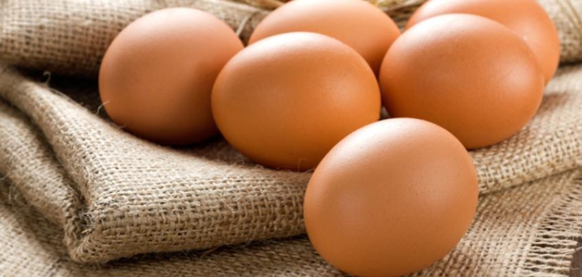 За июль в Удмуртии поднялись цена на куриные яйца и сахар