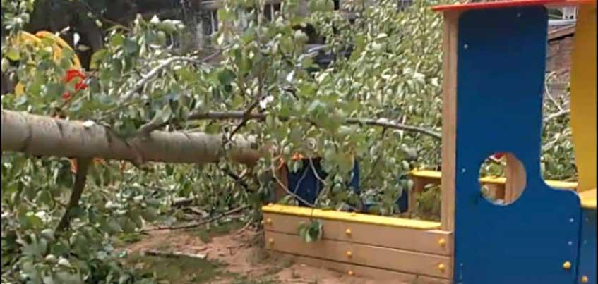 В Ижевске во дворе на Воткинском шоссе на детскую площадку упало высокое дерево