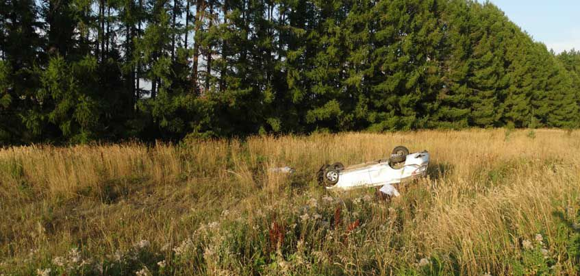 В Удмуртии водитель не справился с управлением и погиб в ДТП