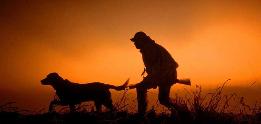 Начало охотничьего сезона в Удмуртии перенесли на неделю