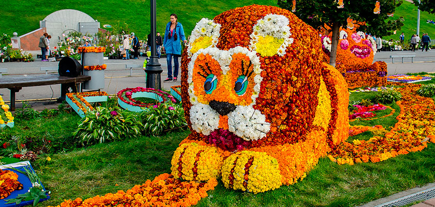 9 сентября в сквере Победы в Ижевске откроется «Праздник цветов»