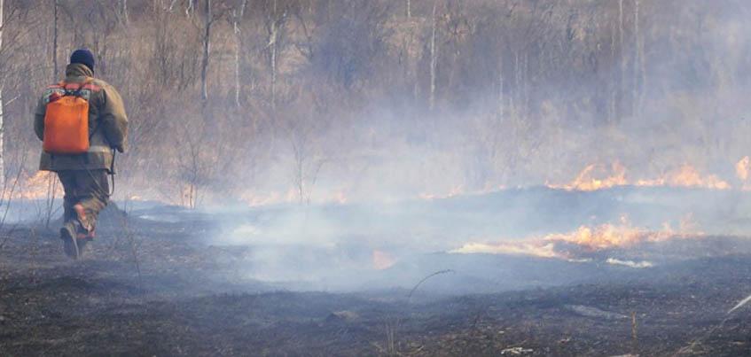 7 сентября в Удмуртии сняли режим ЧС из-за засухи